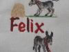 Felix_Susanne